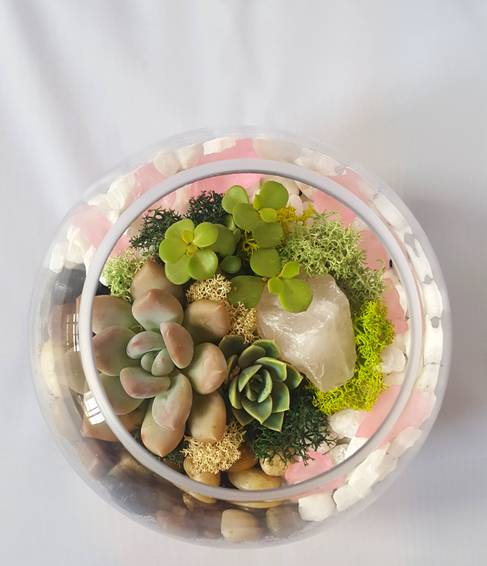 A Succulent Terrarium with Pink Quartz and Sea Glass plant nite project by Yaymaker