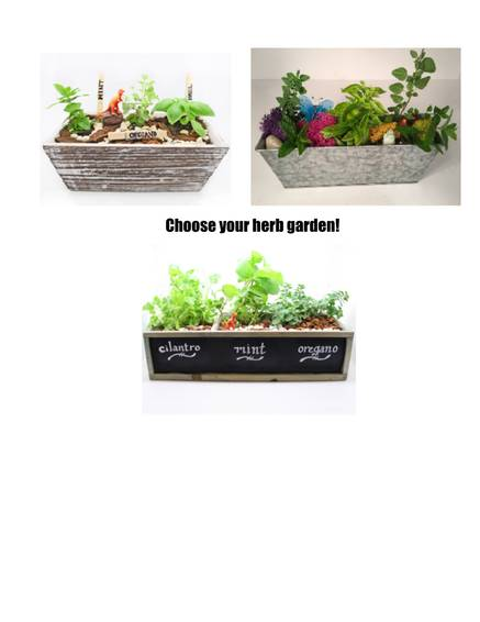 A Pick your herb garden plant nite project by Yaymaker