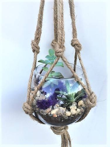 A Rose Bowl Planter with Macrame Hanger plant nite project by Yaymaker