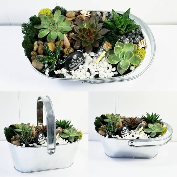 A Metal Planter with 5 Succlents and Wish Jar plant nite project by Yaymaker