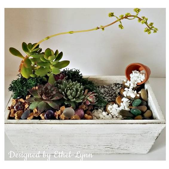 A Haiku Stairs Stairway to Heaven Succulent Terrarium plant nite project by Yaymaker