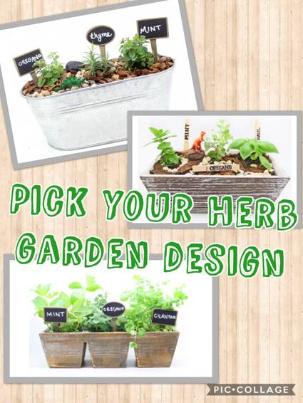 A Herb Garden Mash Up plant nite project by Yaymaker