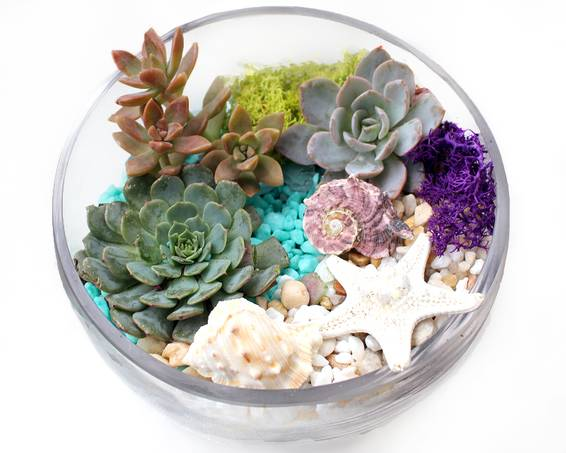 A Under the Sea Slope Bowl plant nite project by Yaymaker