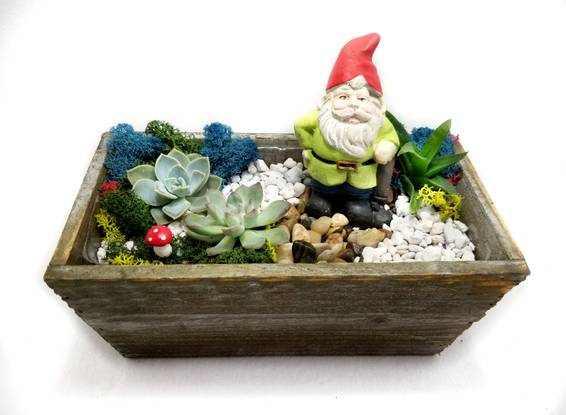 A You Gnome It Succulent Garden plant nite project by Yaymaker