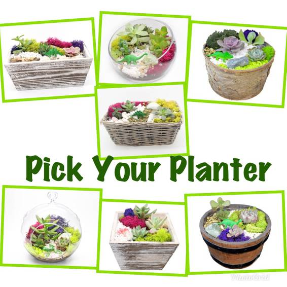 A Pick Your Planter plant nite project by Yaymaker