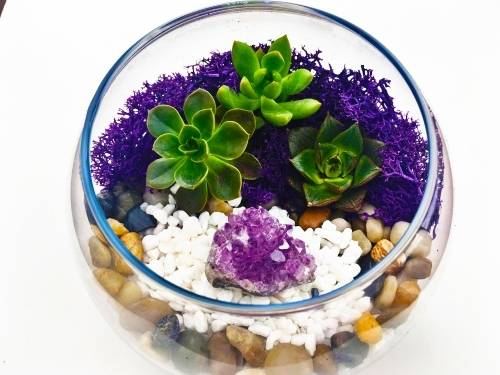 A Amethyst Cluster in Slope Bowl plant nite project by Yaymaker