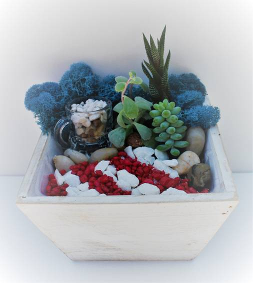 A Red White and Beer Succulent Garden in Whitewashed Wood Planter plant nite project by Yaymaker