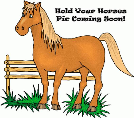 A Hold your Horses Coming Soon plant nite project by Yaymaker