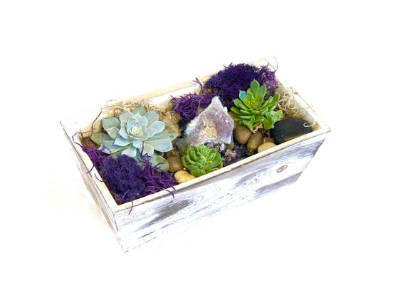 A Amethyst Cluster plant nite project by Yaymaker