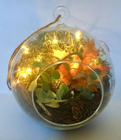 A Fall Fairy Light Succulent Terrarium in Hanging Glass Globe plant nite project by Yaymaker