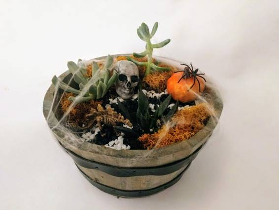 A Haunted Succulent Garden in Whiskey Barrel plant nite project by Yaymaker
