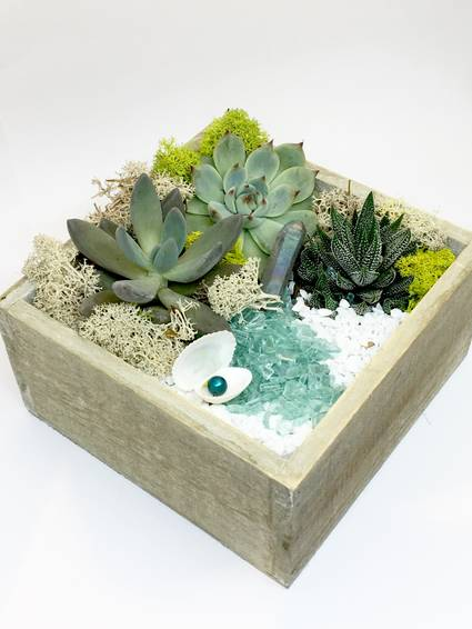 A Shell  Natural Wood Square Planter plant nite project by Yaymaker