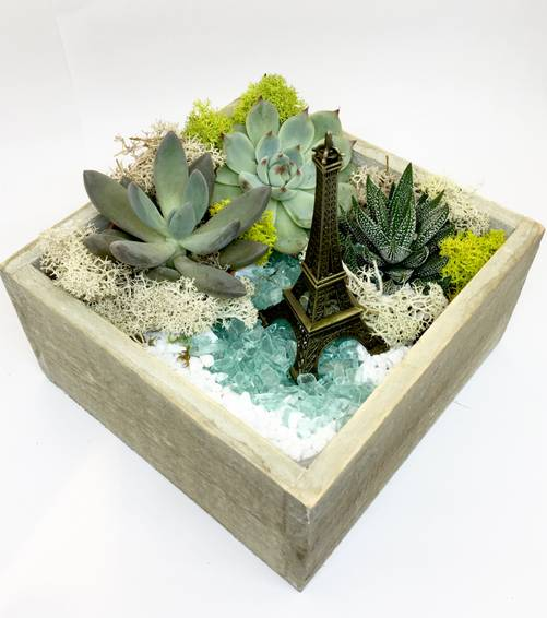 A Paris  Natural Wood Square plant nite project by Yaymaker