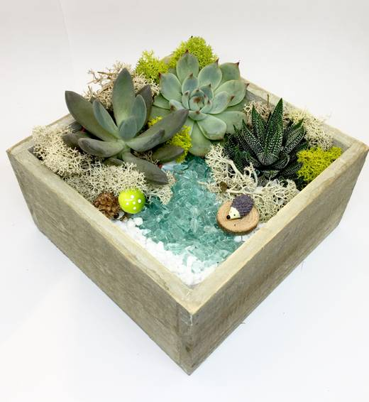 A Hedgehog  Natural Wood Square plant nite project by Yaymaker