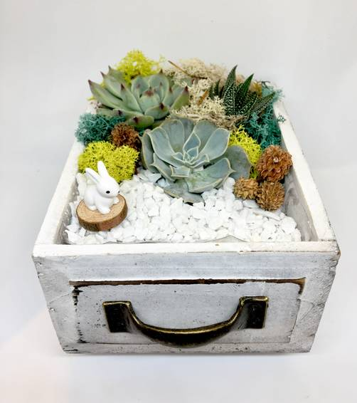 A Bunny Wood Drawer plant nite project by Yaymaker
