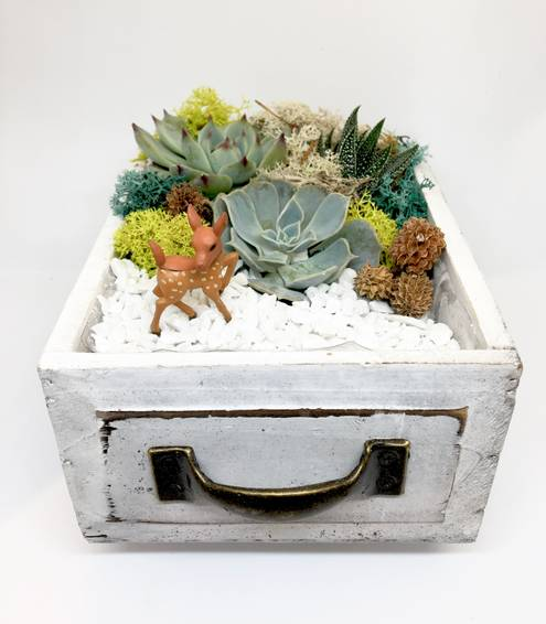 A Deer Wood Drawer plant nite project by Yaymaker