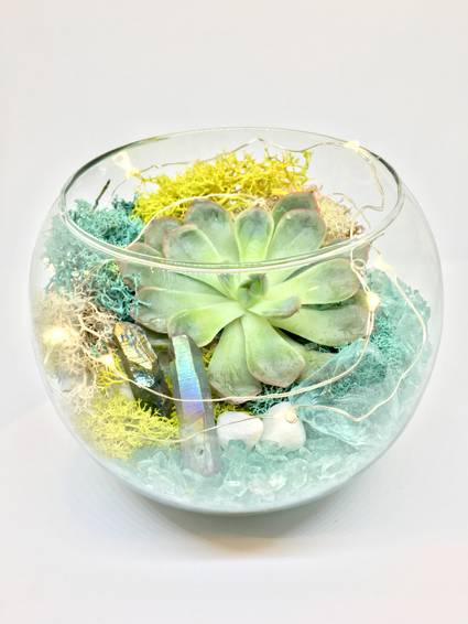 A Crystal Elements  Rose Bowl with Fairy Lights plant nite project by Yaymaker