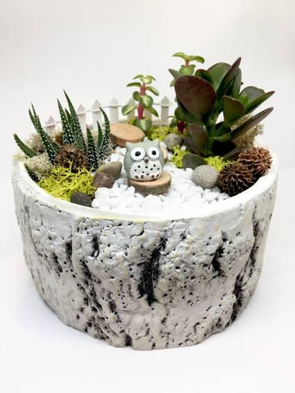 A Owl Garden  Premium Birch Bowl plant nite project by Yaymaker