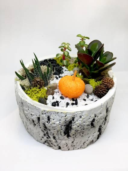 A Pumpkin Garden  Premium Birch Bowl plant nite project by Yaymaker