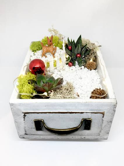 A Winter Deer Wood Drawer with Fairy Lights plant nite project by Yaymaker