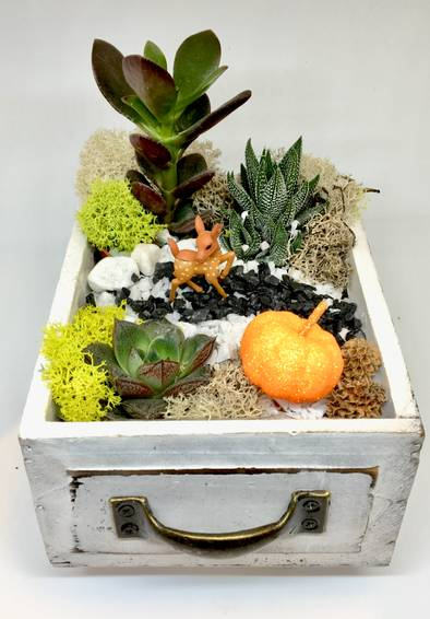 A Fall Forest Wood Drawer plant nite project by Yaymaker