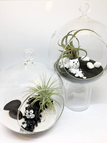 A Air Plant  Small Hanging Globe Pair of Planters  Owl Yin Yang plant nite project by Yaymaker