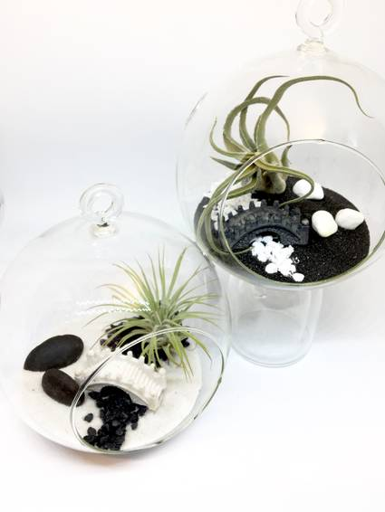 A Air Plant  Small Hanging Globe Pair of Planters  Zen Bridge Yin Yang plant nite project by Yaymaker