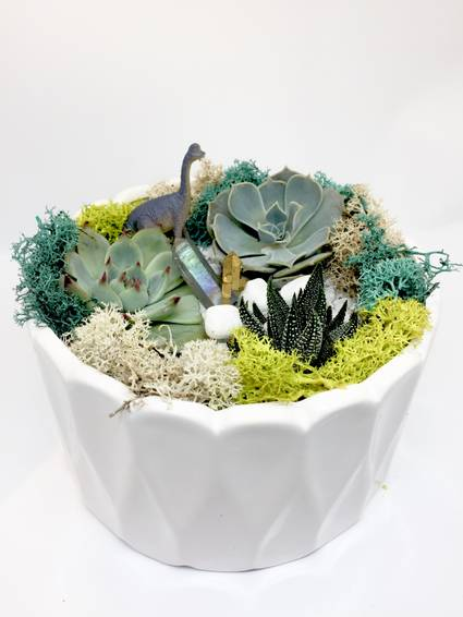 A Dino Crystal Garden  White Round Ceramic plant nite project by Yaymaker