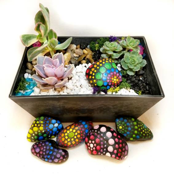 A Paint your own Color Pop Rock with Succulents plant nite project by Yaymaker