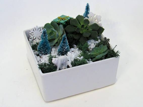 A Winter Wonderland in White Ceramic Planter plant nite project by Yaymaker