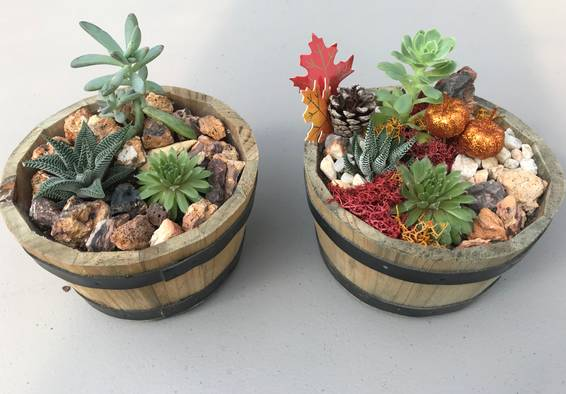 A Fall or Classic Barrel Planters plant nite project by Yaymaker