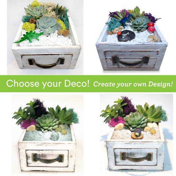 A Choose your Deco  Wood Drawer plant nite project by Yaymaker