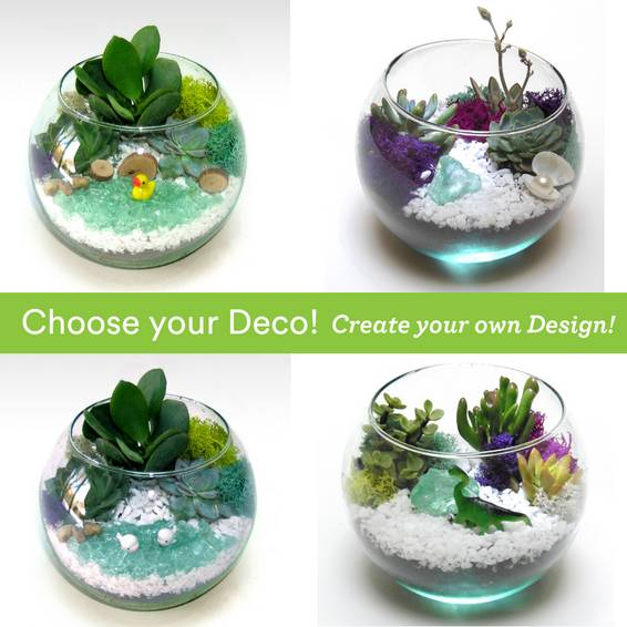 A Choose your Deco  Rose Bowl 2 plant nite project by Yaymaker
