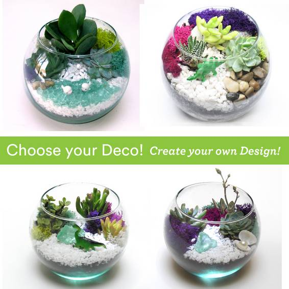 A Choose your Deco  Rose Bowl plant nite project by Yaymaker