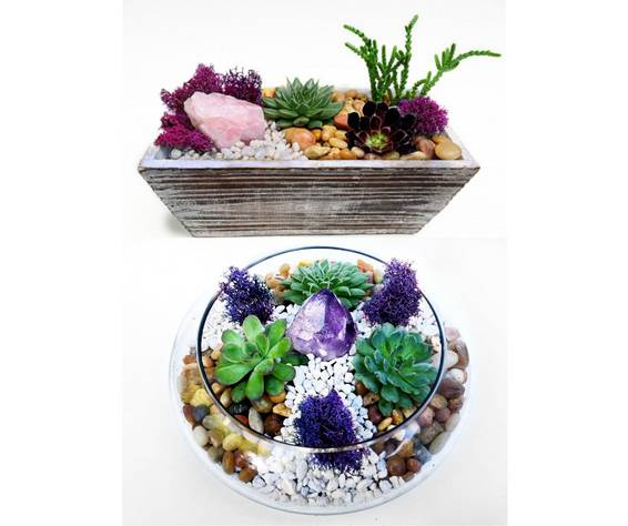 A Choose Between Distressed Wood or Glass Container with Amethyst or Rose Quartz Crystal plant nite project by Yaymaker