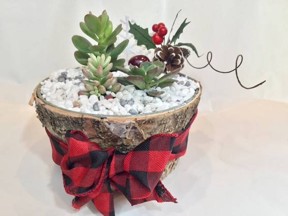 A Winter Scene in Birch plant nite project by Yaymaker