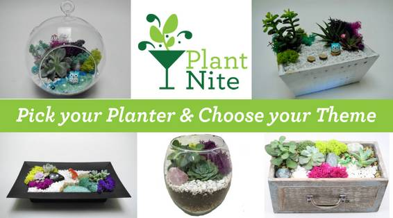 A Pick your Planter  Theme plant nite project by Yaymaker