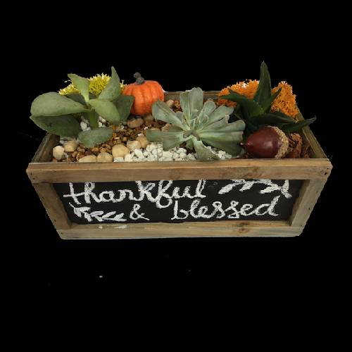 A Thanksgiving Chalkboard Terrarium plant nite project by Yaymaker
