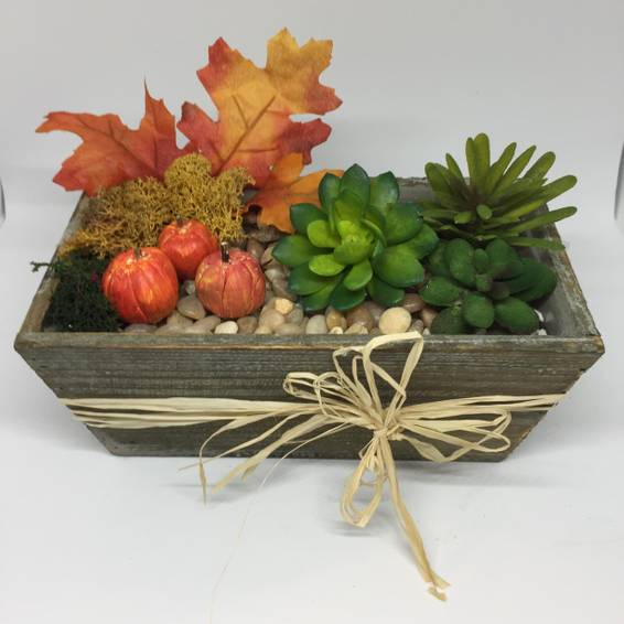 A Create and Paint Your Own Pumpkin 8 Wooden Succulent Planter plant nite project by Yaymaker