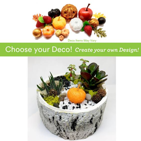 A Choose your Deco  Autumn Harvest Birch Bowl plant nite project by Yaymaker