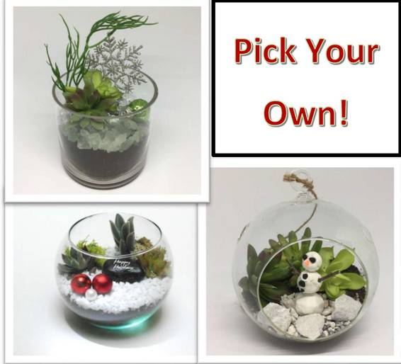 A Pick Your Own Holiday Winter Planter plant nite project by Yaymaker