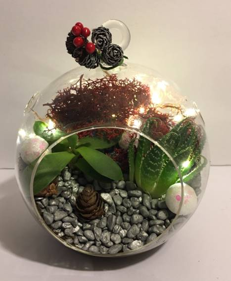 A Holiday Hanging Lights plant nite project by Yaymaker