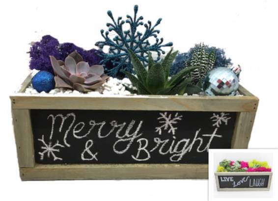 A Chalkboard Holiday or Everday Design plant nite project by Yaymaker