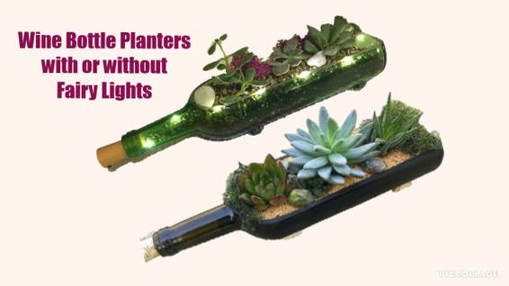 A Wine Bottle Planter with or without Fairy Lights plant nite project by Yaymaker