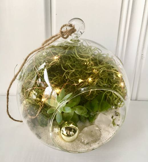 A Hanging Globe Succulent Terrarium w Fairy Lights  Ornament plant nite project by Yaymaker