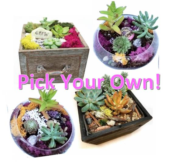 A Pick Your Own Wooden or Glass Planter plant nite project by Yaymaker
