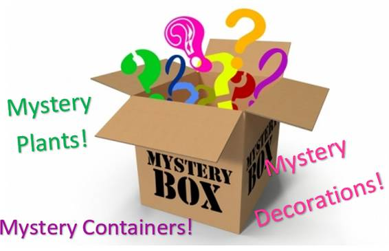 A Mystery Box plant nite project by Yaymaker