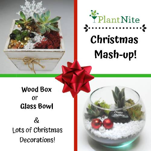 A Holiday Mash Up Event  Wood Box or Glass Bowl plant nite project by Yaymaker