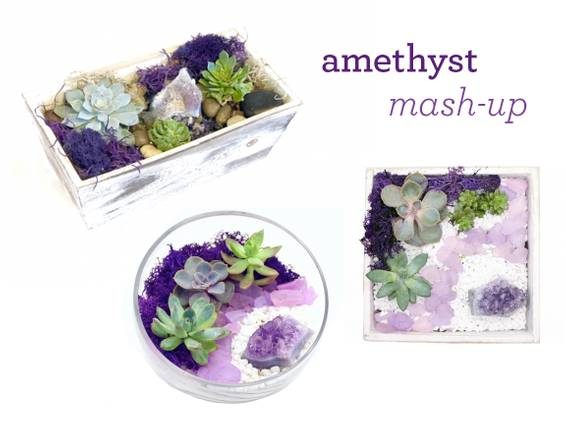 A Amethyst Planter MashUp Succulent Terrarium plant nite project by Yaymaker