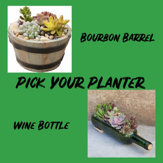 A Pick Your Planter Bourbon Barrel or Wine Bottle plant nite project by Yaymaker
